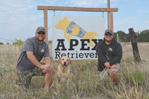 Apex Retrievers