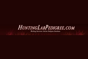 Hunting Lab Pedigree